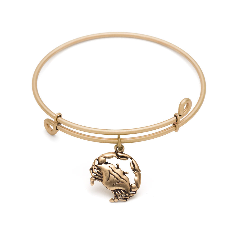 SOL Crab, Bangle Antique Gold Color Finish