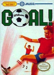 Goal for NES Game