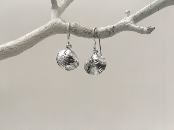Tiny Clam Dangle Earrings