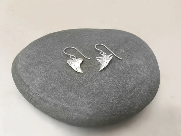 Shark Tooth Dangle Earrings