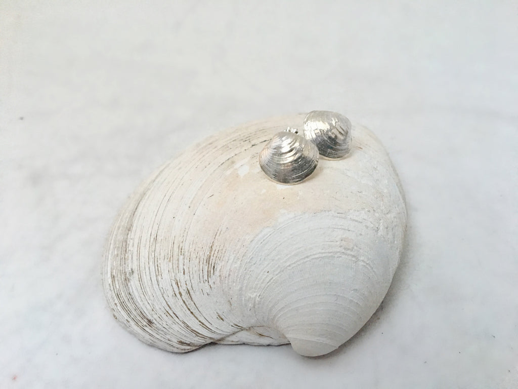 Tiny Clam Stud Earrings