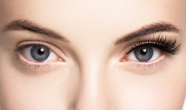 Plucked And Shaded: The Relationship Between Your Face Shape And Your Eyebrows