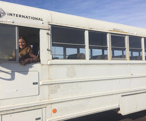 One Woman, a Bus, and a Corgi: An Adventure Back Into the Wild
