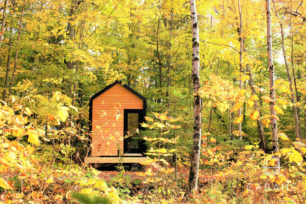 Tiny Cabin in the Woods by Cabane in Quebec Canada