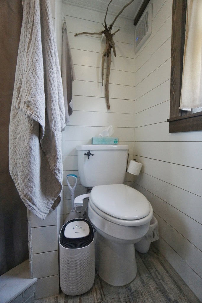 Tiffany the Tiny Home Flush Toilet