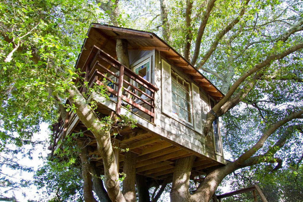 Treehouse Above San Francisco Bay in San Mateo, California - Tiny Houses for rent on Airbnb