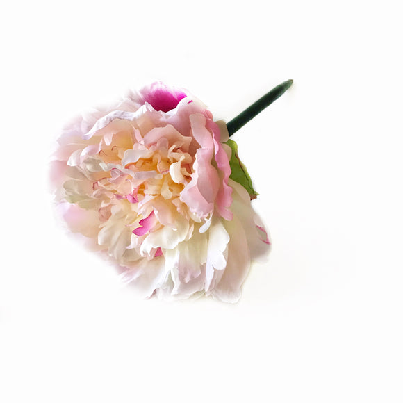 The Pink Peony