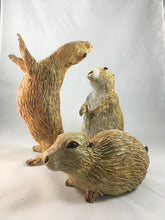 Load image into Gallery viewer, Prairie Dog Group
