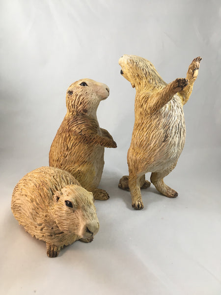 Prairie Dog Group