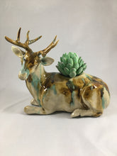 Load image into Gallery viewer, Mule Deer- Box Planter Combo Sancai
