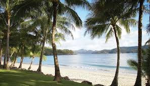 Best beach wedding destinations Hamilton Island
