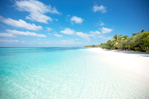 best beach wedding destinations mauritius