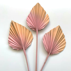 Load image into Gallery viewer, Dried Palm Spears - Soft blush
