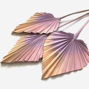 Dried Palm Spears - Soft blush and lilac