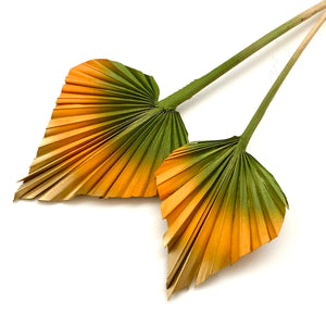 Load image into Gallery viewer, mango green orange palm spears