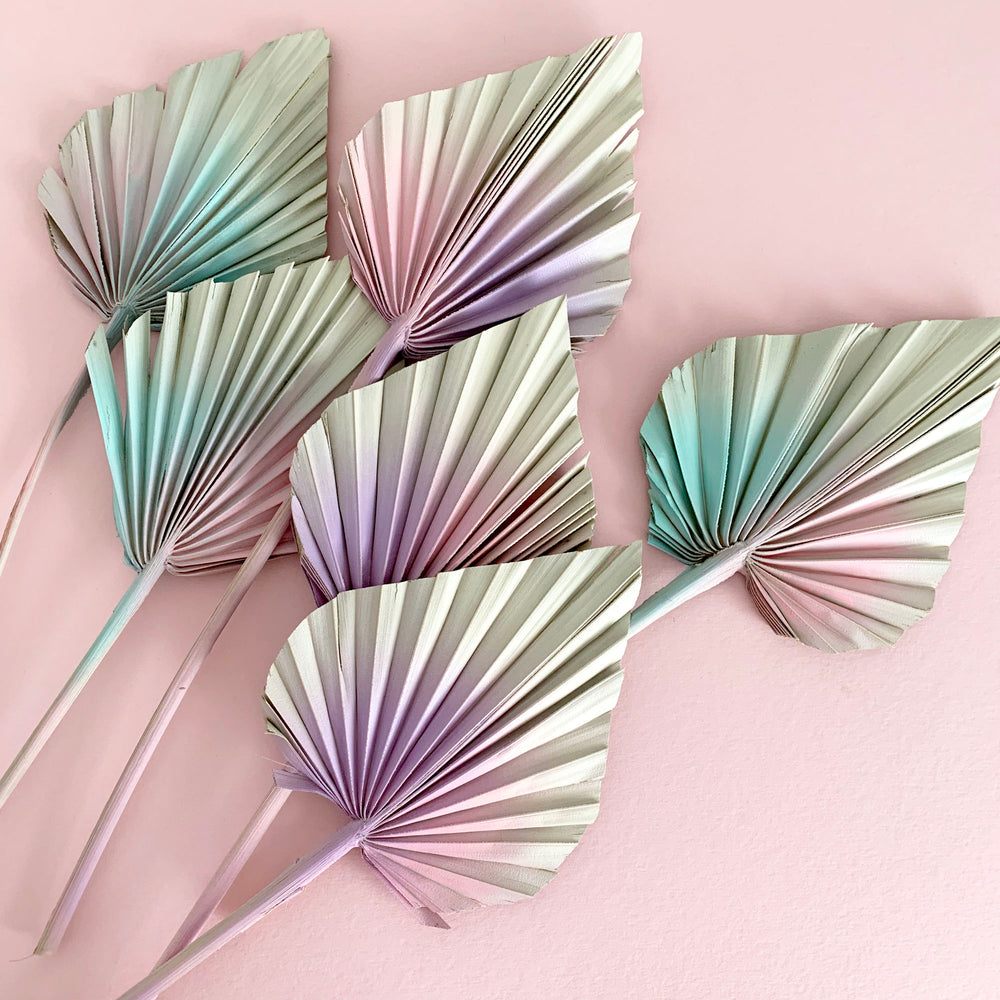 Pastel Pinks Dried Palm Spears x 3