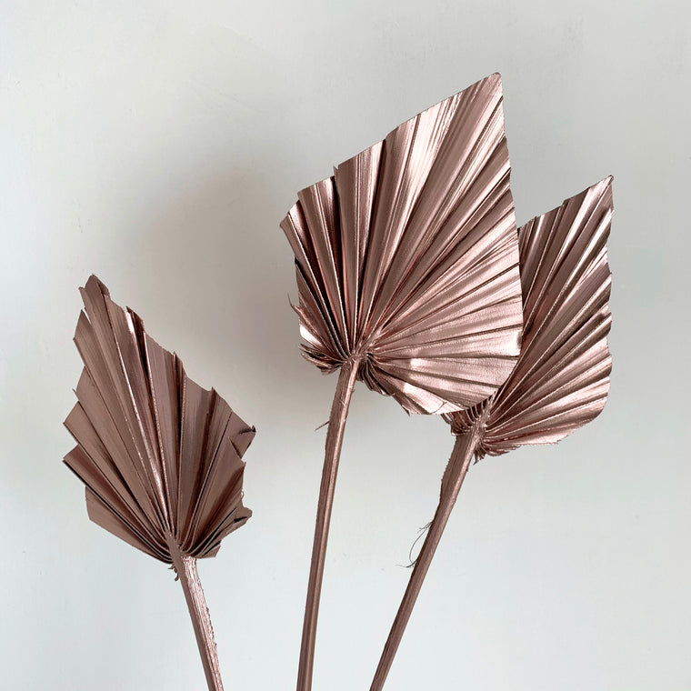 Metallic Dried Palm Spears - more cols available