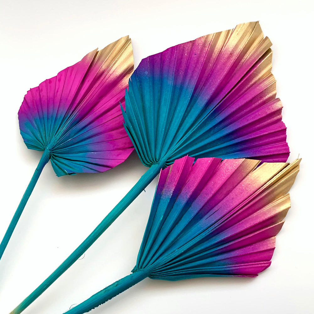 jewel colours palm spears