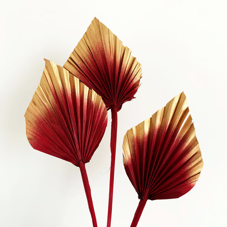 Dried Palm Spears - Cranberry and Gold