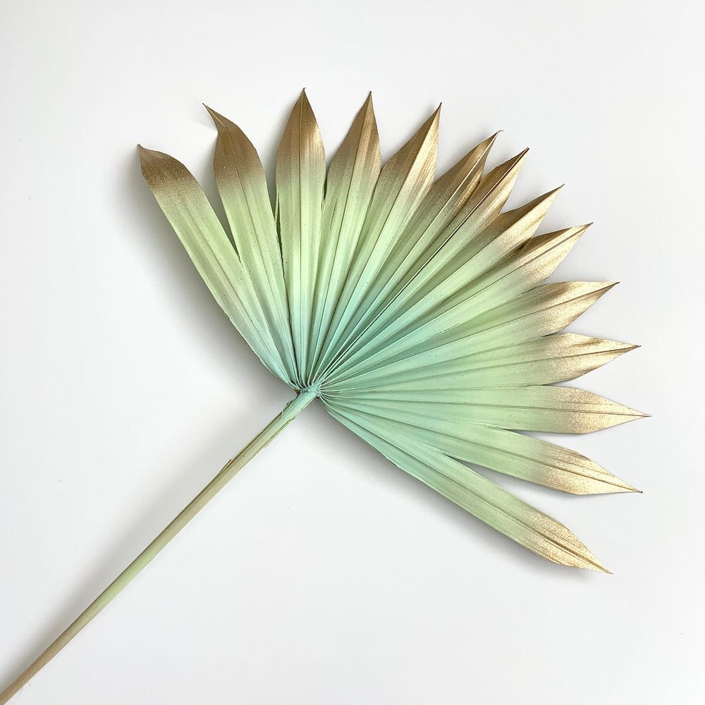 mint and gold sun palm