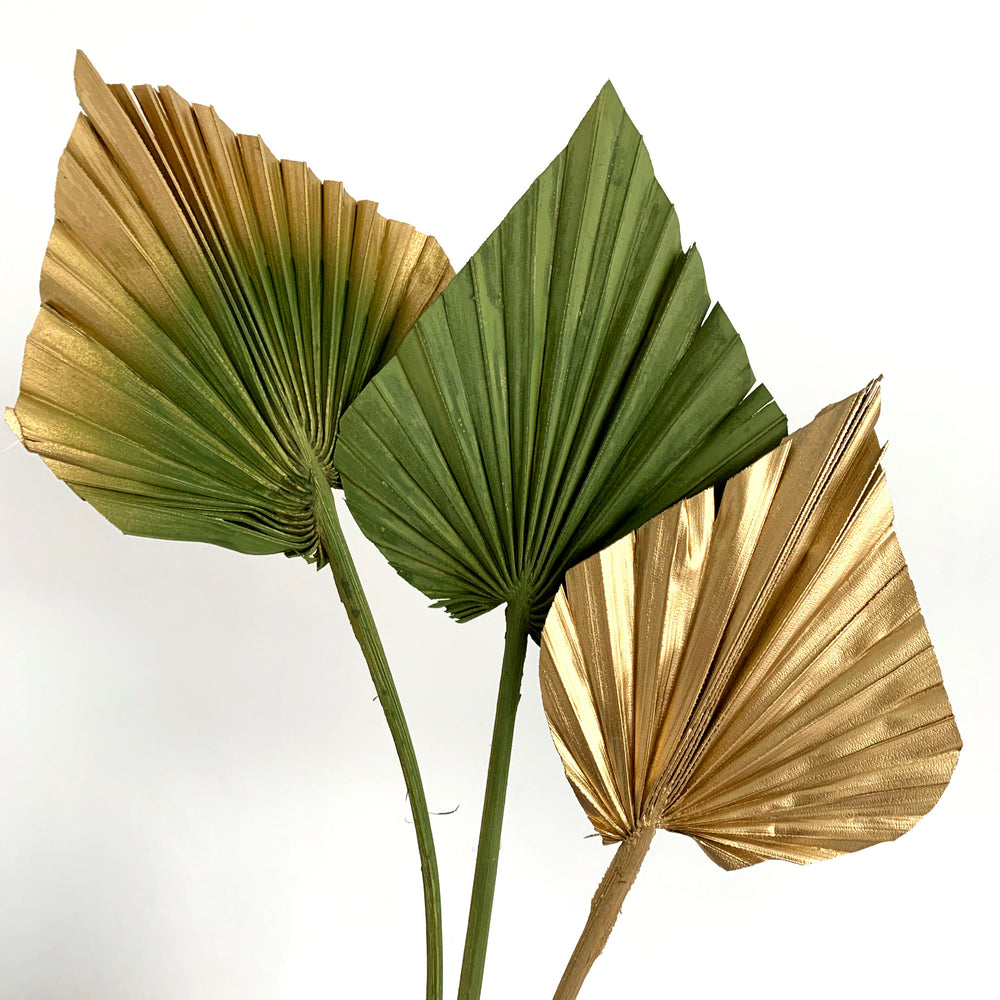 safari khaki green and gold palm spears dried flowers