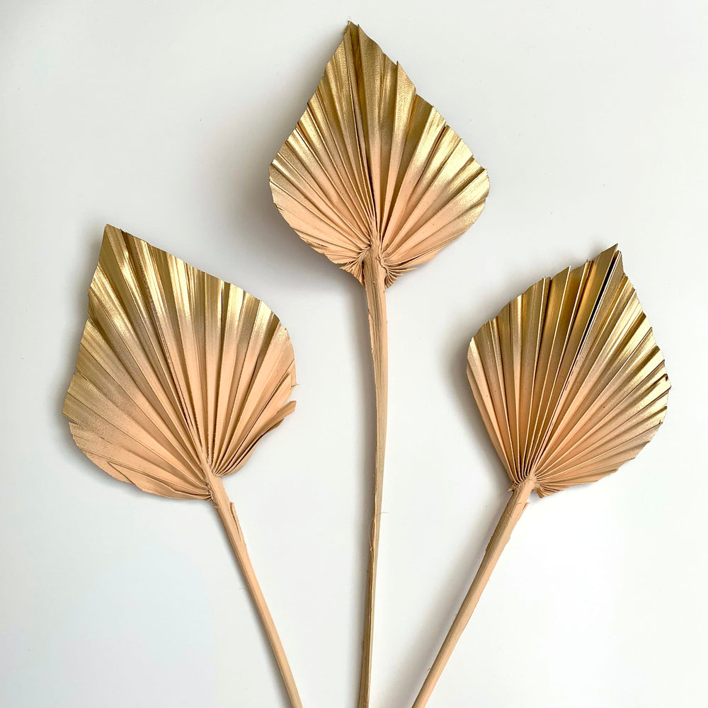 Dried Palm Spears - Peach and gold