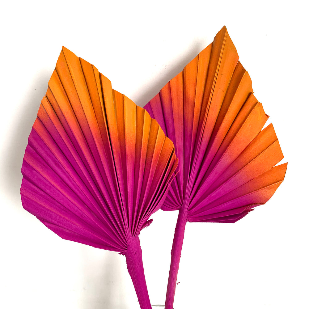 hot pink and orange sunset palm spears cake topper