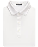 Palmer Solid Performance Polo - turtleson