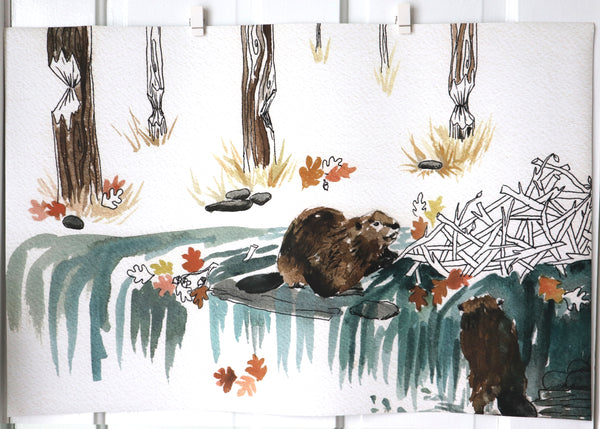 Autumn Beavers- Large Vinyl Print