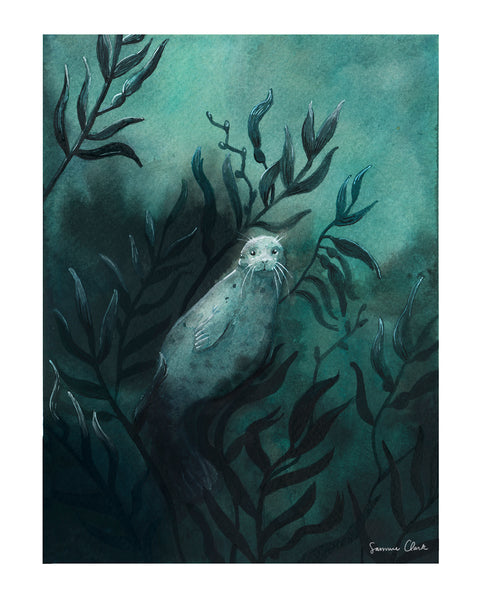 Seal in Kelp Forest