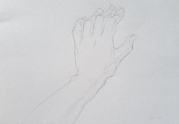 anatomy hand homework