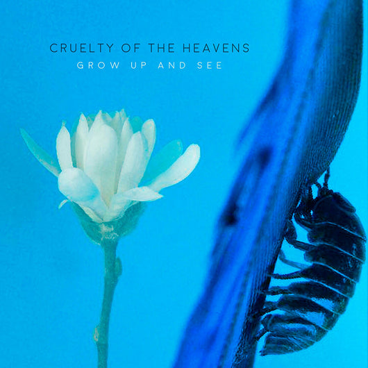 Cruelty of the Heavens - Grow Up and See - Digital Download