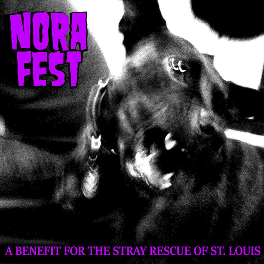Nora Fest - Compact Disc