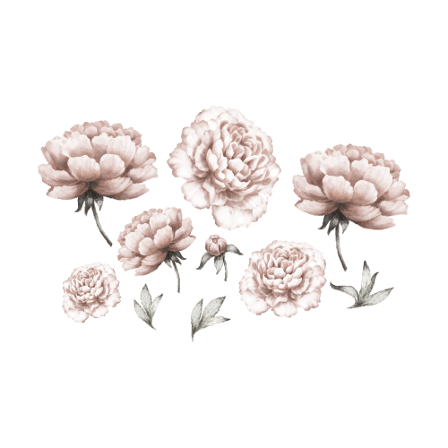 Wall Stickers - Peony Flowers