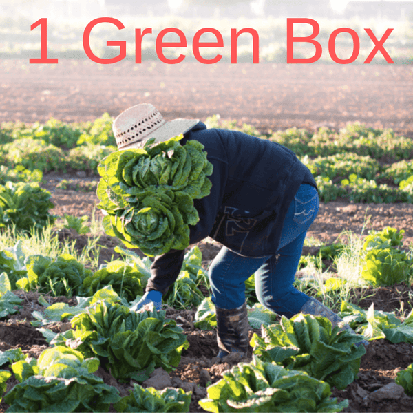 Green Box: Weekly Subscription to the Best Local Food (1 Week or 4 Weeks or Greens Only)! A Well Run Life Single Box Option
