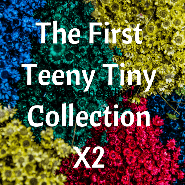 The First Teeny Tiny Collection A Well Run Life 2