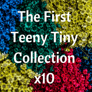The First Teeny Tiny Collection A Well Run Life 10