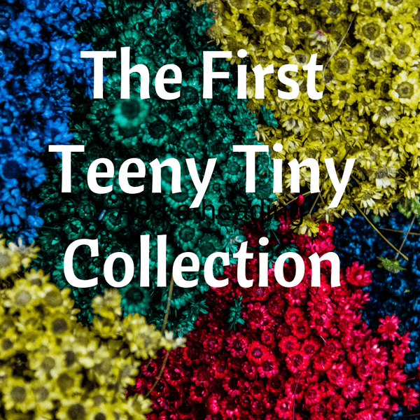 The First Teeny Tiny Collection A Well Run Life 1