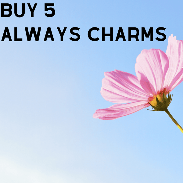 The Always ❤️Charm A Well Run Life Get 5 Always Charms