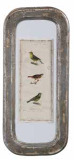 Coop Birds Behind Glass Wall Decor-COOP-Sleeping Giant
