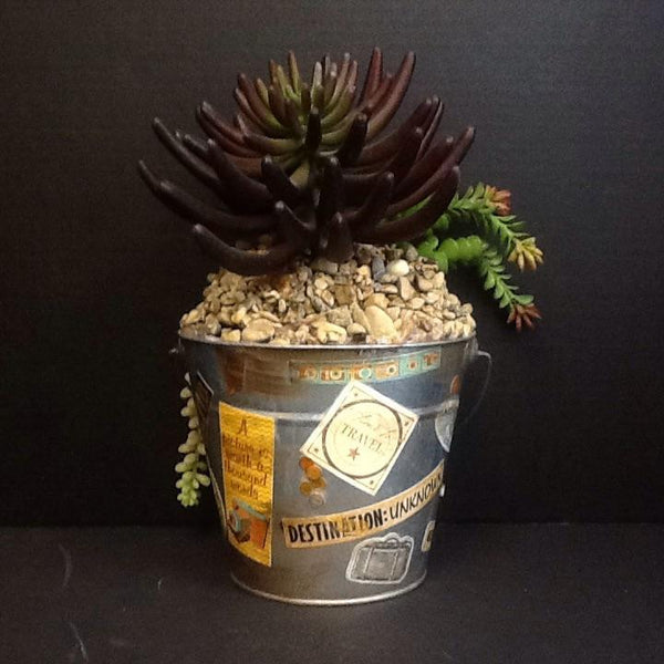 One of a Kind Planter W/ Succulents Travel Memories-One of a Kind-Sleeping Giant