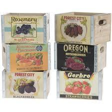 Parkhill Berry Storage Boxes-Parkhill-Sleeping Giant