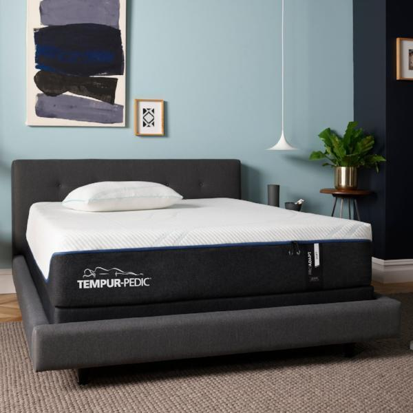 TEMPUR-ProAdapt™ Soft-Tempur-Pedic-Sleeping Giant
