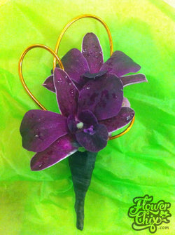 Purple Dendro Orchid Bout
