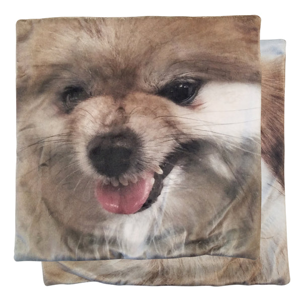 pomeranian pillow pom lover munjo wild dog