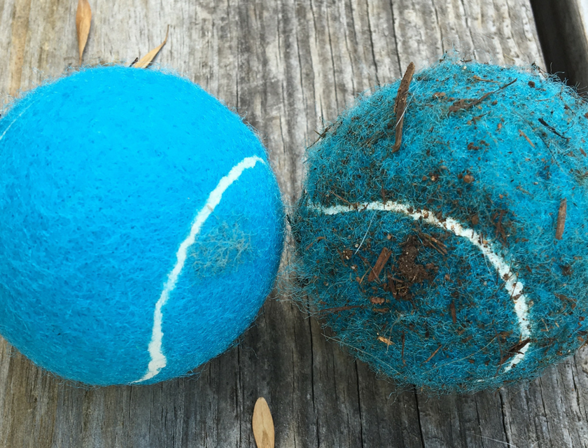 Three ways to clean your iFetch balls