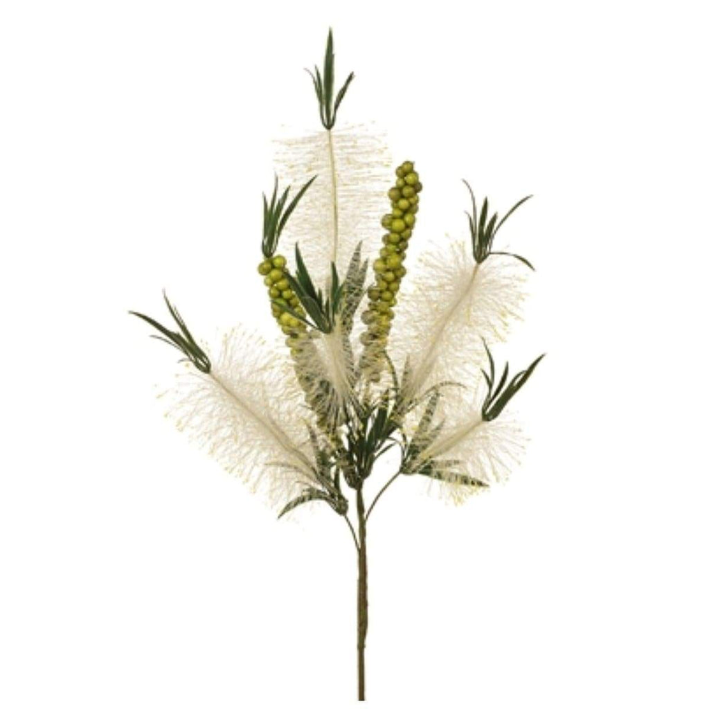 Bottlebrush Spray Cream 81cm
