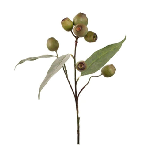 Eucalyptus Gum Nut Spray Green 64cm