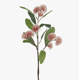 Sweet Gum Blossom 71cm - Assorted Colours