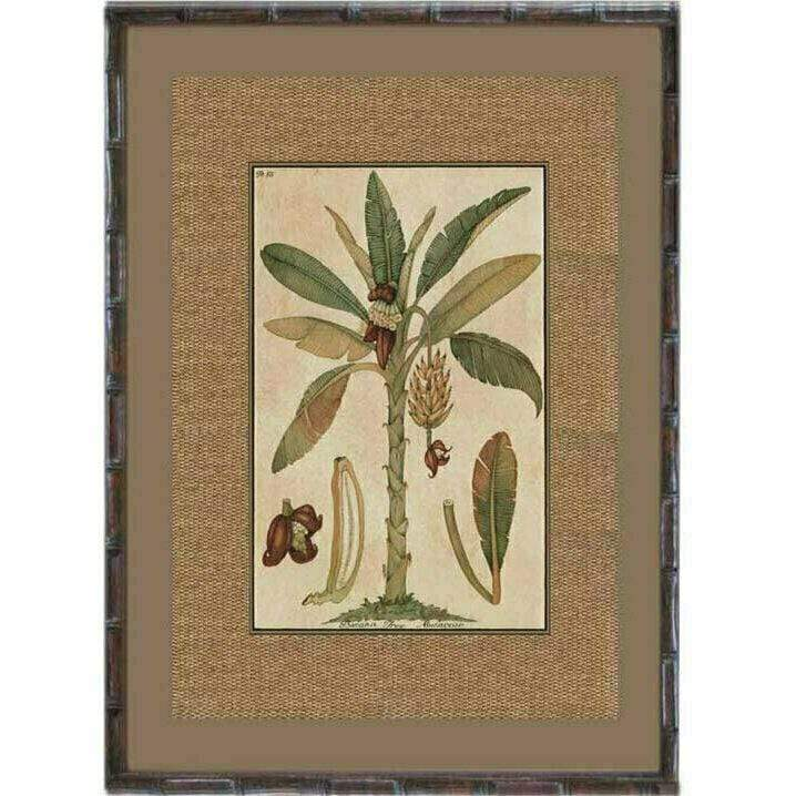 Dark Rattan Palm Prints 93x74cm - Assorted Designs